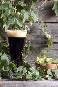 Hops-and-Dark-Beer